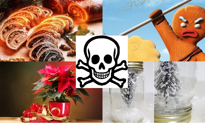 Szezonális mérgezések Karácsony környékén!!